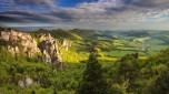 Orchidejové hory
